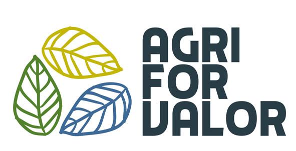 El Foro Transfiere acogerá el II taller de Agriforvalor