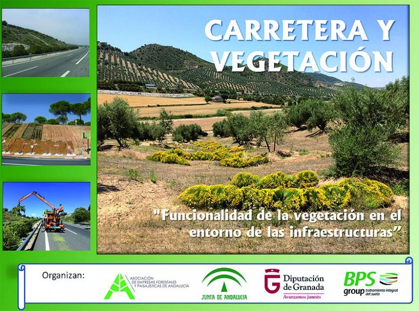 jornada carretera y vegetacion