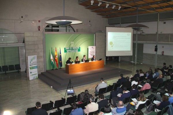 Gran éxito en el taller de Sevilla dedicado a biomasa agrícola y forestal en el marco del proyecto Agriforvalor