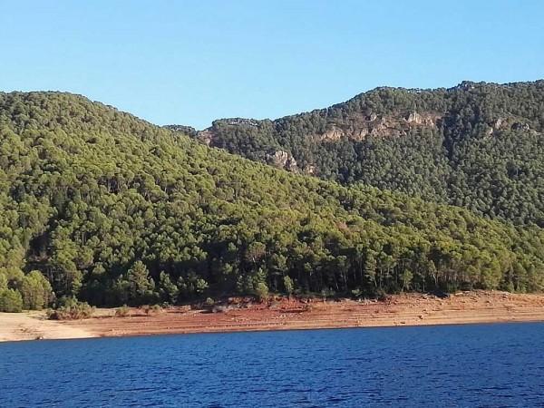 AAEF reivindica la importancia del monte en la calidad de vida de las personas y la conservación de la biodiversidad