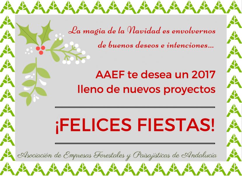 felicitacion-navidad-aaef-2016