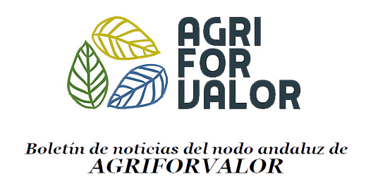 Cabecera newsletter Agriforvalor