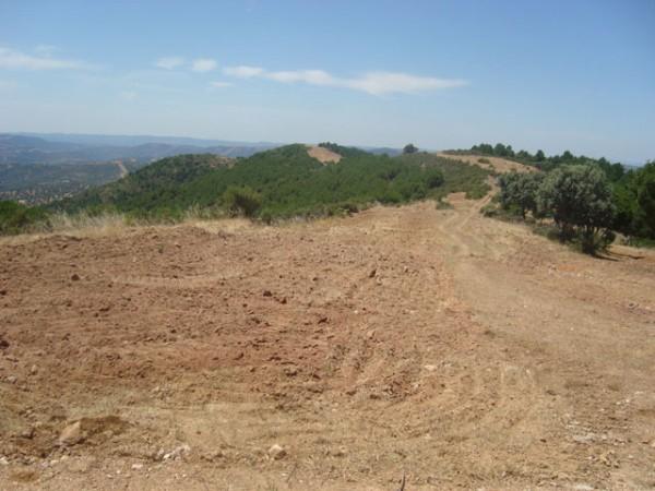 El sector forestal pide responsabilidad social ante un verano con alta probabilidad de incendios